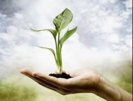 hand-seed
